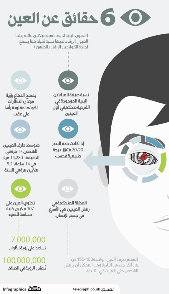 انفوجرافيك: 6 حقائق عن العين | صحيفة مكة